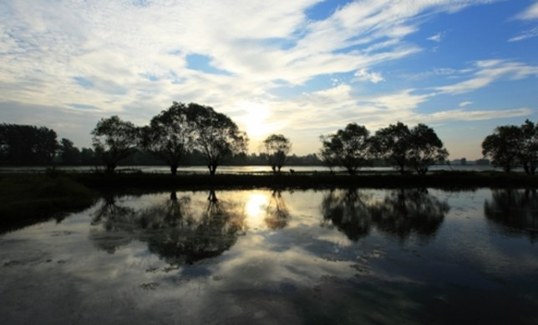 旅途中的家 个人房东 扬州仪征登月湖风景区月塘镇龙山村农家乐 1室