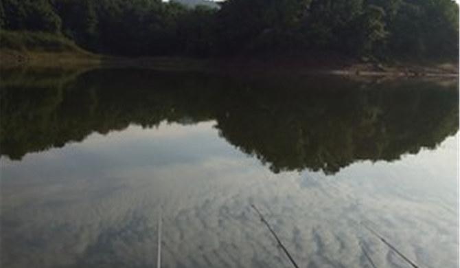 三里溪水库桃花岛生态农庄双人间