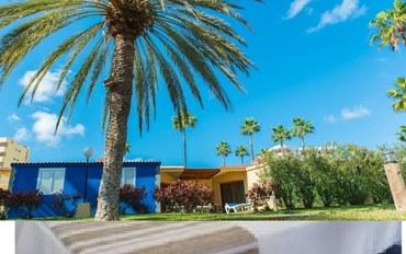 大加那利岛酒店公寓住宿:普拉亚戴尔因格莱斯套房公寓