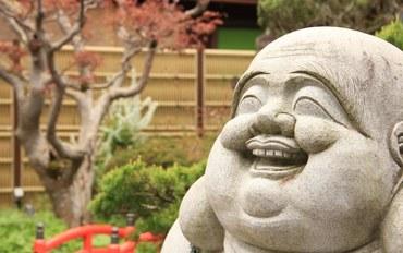 奈良酒店公寓住宿:光绿园西清