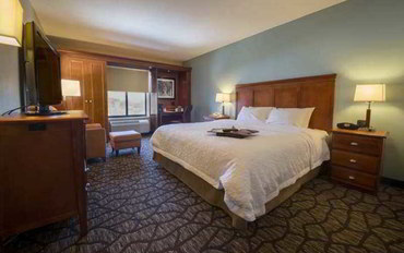 宾汉顿(纽约州)酒店公寓住宿:宾厄姆顿/凡斯特尔欢朋套房