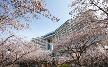 庆州酒店公寓住宿:大明庆州度假村
