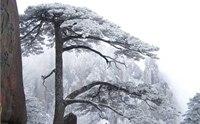 2013九华山冬季旅游攻略 九华山冬季旅游注意事项