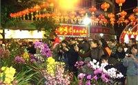 2014深圳迎春花市时间 2014深圳迎春花市地点 活动介绍