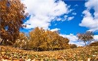 木兰围场最佳旅游时间 几月去木兰围场好