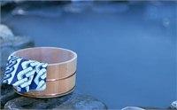 2014泰山温泉城门票多少钱 泰山温泉城门票价格
