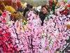 2015广州迎春花市时间/地点/门票 2015广州迎春花市活动一览