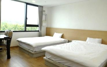 济州岛酒店公寓住宿:济州观光区10分钟车程 标准大床房