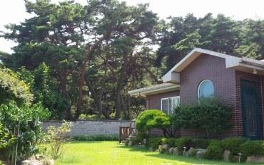 庆州酒店公寓住宿:休闲在安宁的韩国田园风光-庆州千年爱屋