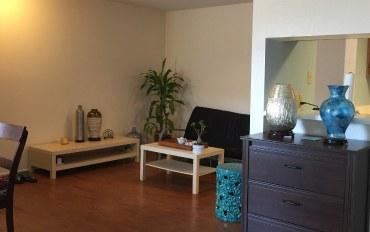 休斯顿酒店公寓住宿:休士顿中国城温馨公寓